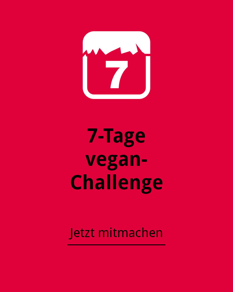 7-tage-farbe